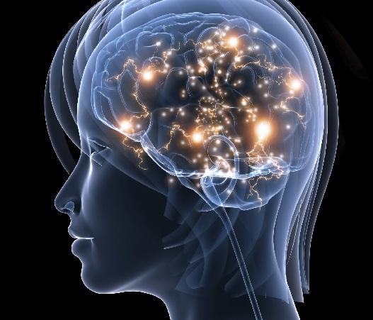 Neuroscience Is The Mind